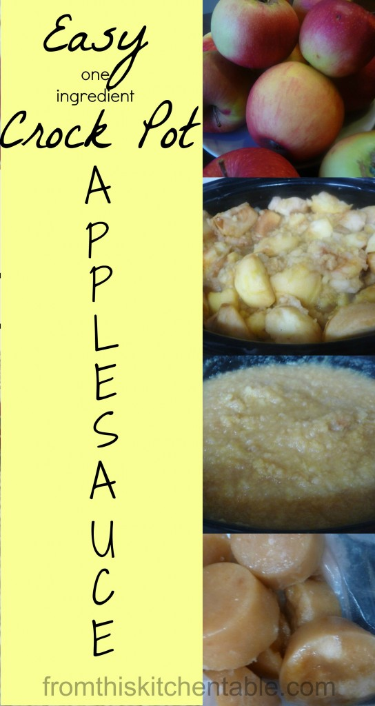 Easy (one ingredient) Crock Pot Applesauce! Great for the freezer.