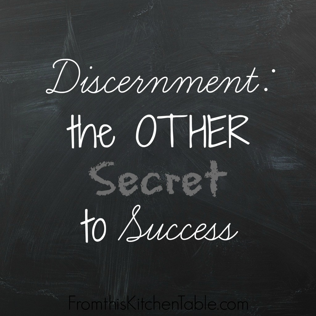 Discernment: The Other Secret to Success. We need more than discipline. We must know what to say NO to.