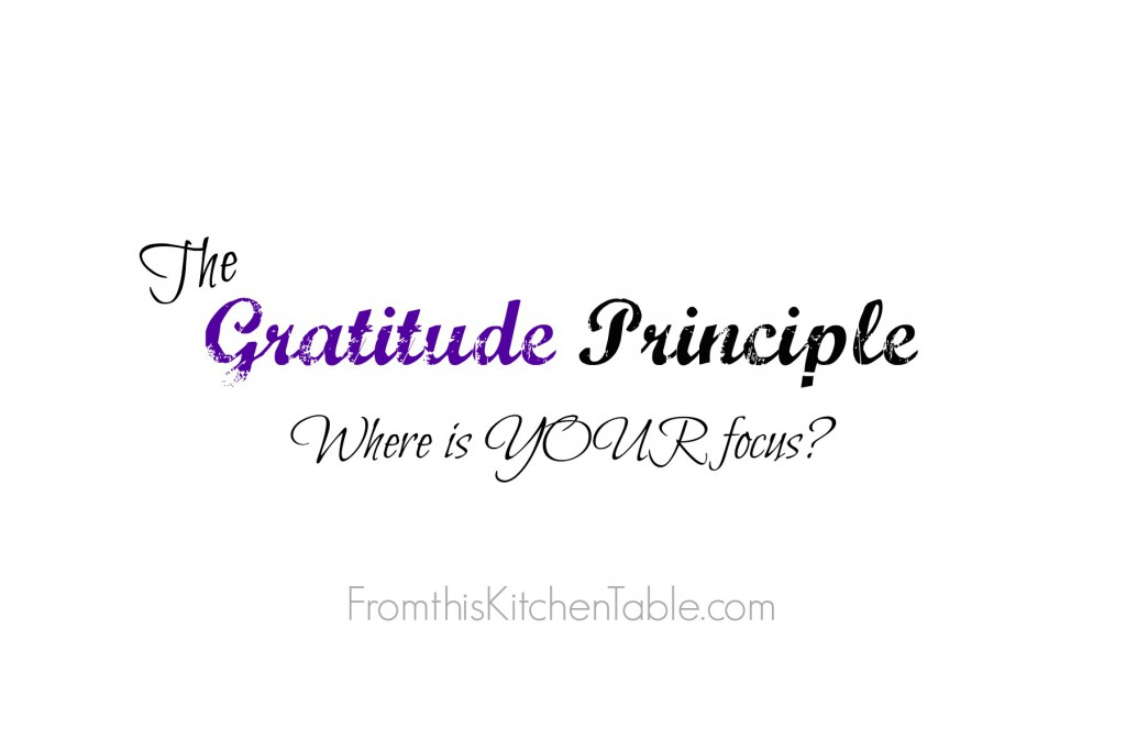 The Gratitude Principle. Where do you have your focus? Comparison will take our joy away!