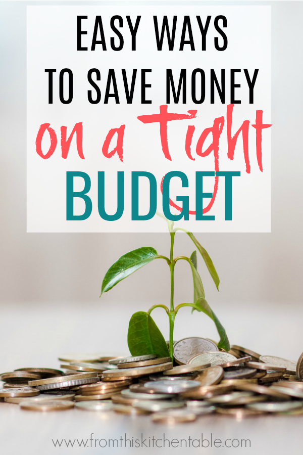 picture of small plant surrounded by coins and words easy ways to save money on a tight budget