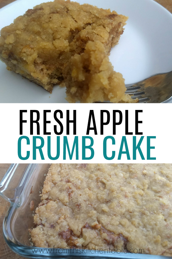 Yummy picture of fresh apple cake is amazing - loaded with apples and a delicious crumb topping. This recipe will have you dreaming of Fall. Family favorite!