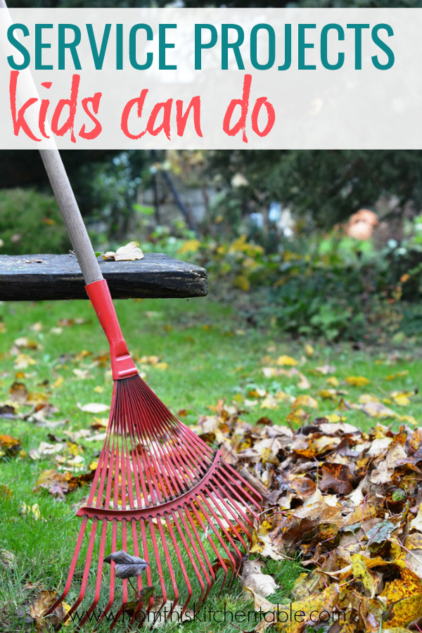 a rake and a pile of leaves. This post has great ideas for kid service projects!