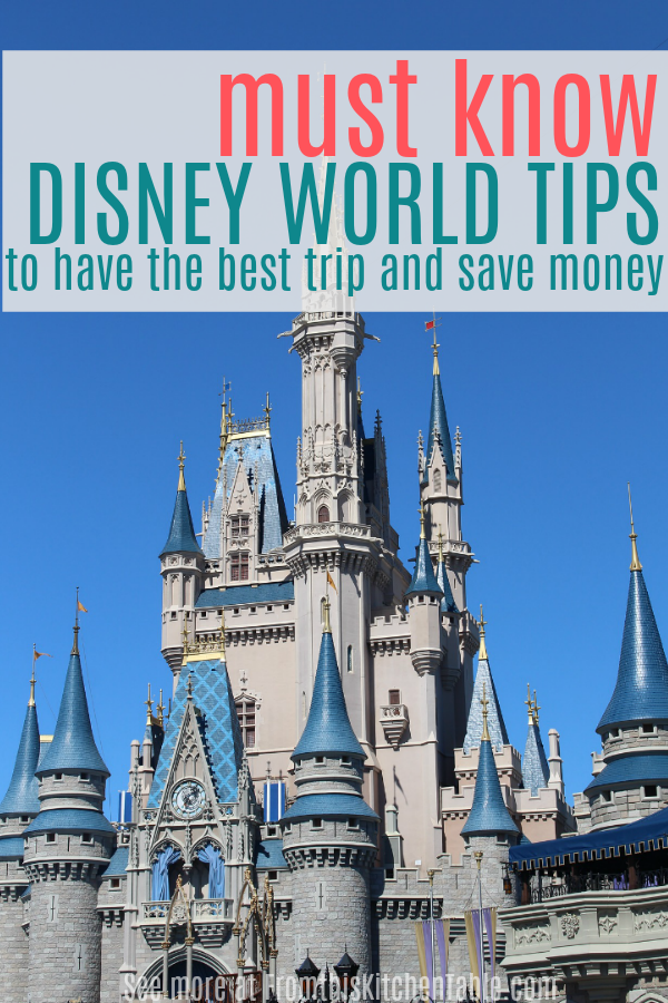 Disney world castle and Disney World tips
