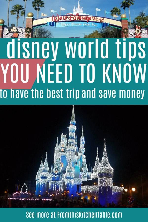 Disney world castle at night and Disney world tips
