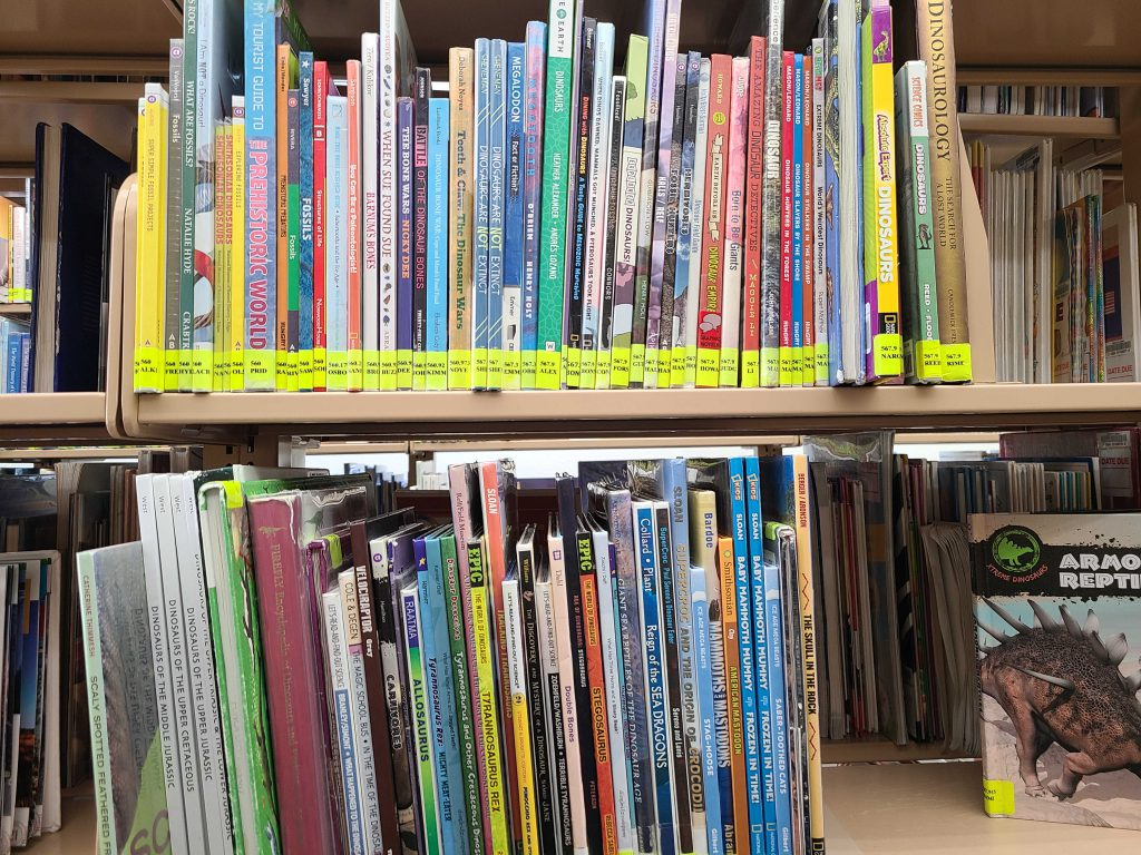 the non fiction book section at the library