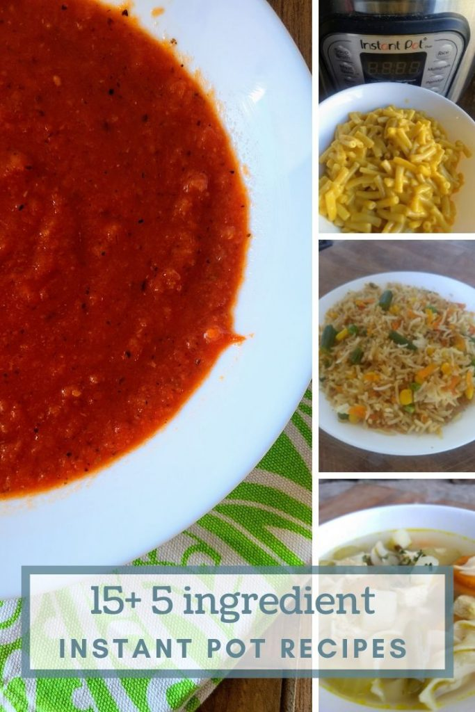 Collage of 4 5 ingredient Instant Pot Recipes